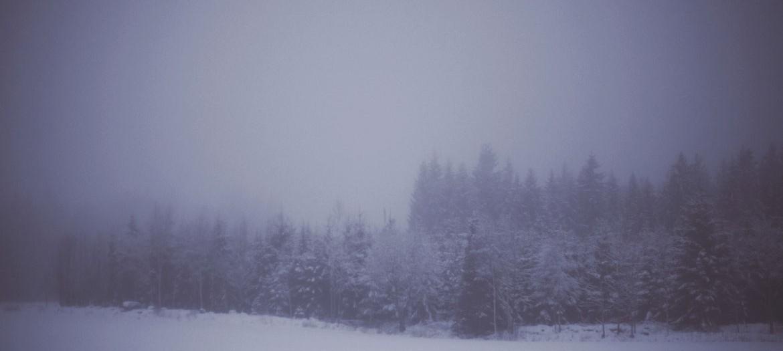 Vintern ramlade över oss.