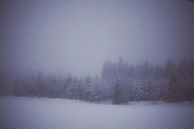 vinter-skog-ulricehamn-foto-fotograf-snö