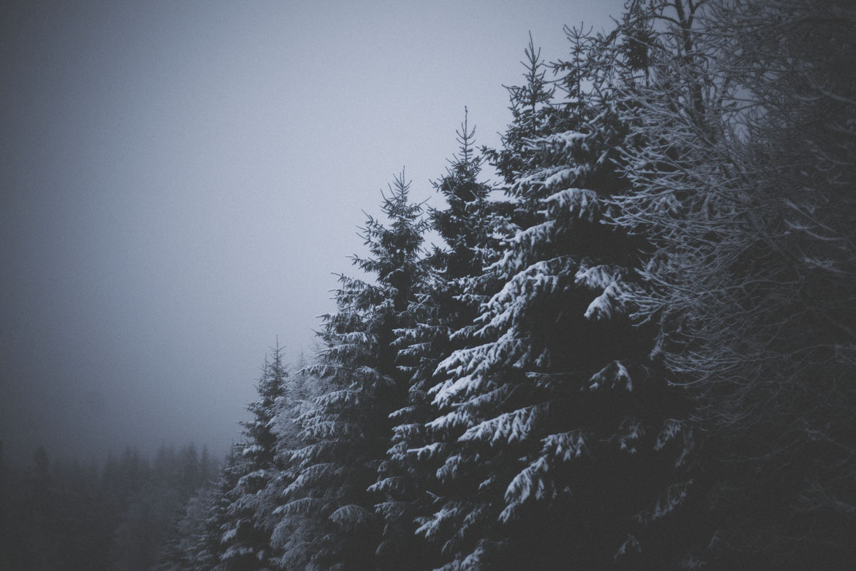 vinter-ulricehamn