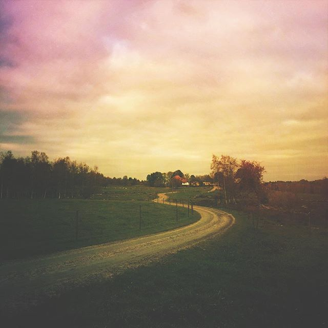 Instagram - iPhoneography